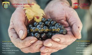 header_vendemmia2017_650