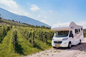 Le donne del vini invitano i camperisti a dormire una notte tra le vigne in vendemmia